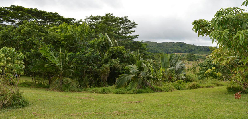 land for sale mauritius chamarel