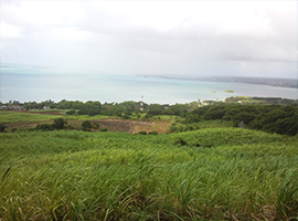 land for sale mauritius